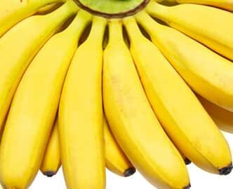 Do acesso e a exploração da biodiversidade brasileira: Yes, nós temos banana!