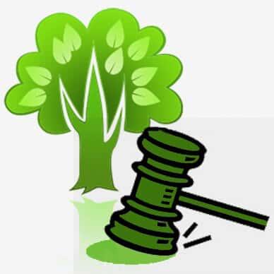 STJ - Agropecuária mineira é condenada a pagar R$ 150 mil por dano ambiental