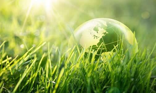 Dano ambiental individual e o prazo prescricional da respectiva ação reparatória