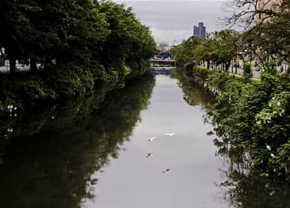Código Florestal prevalece sobre lei de Parcelamento do Solo Urbano, decide STJ