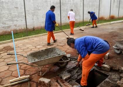 TJ/SC instaura IRDR sobre remição de pena a presos que tiveram trabalho suspenso na pandemia