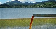 STJ mantém condenação de R$ 500 mil à JBS por dano ambiental