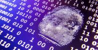 Decreto cria força-tarefa de inteligência para combate ao crime organizado