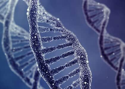Prova genética x reconhecimento pessoal: empatado julgamento de condenado por estupro no STF