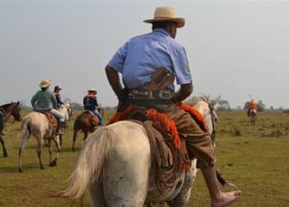 Tropeiro será indenizado após sofrer acidente ao transportar mulas